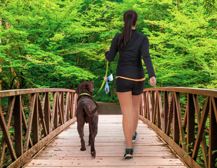 The Fifth Paw hands-free dog poop carrier gives you the freedom to enjoy walking your dog!