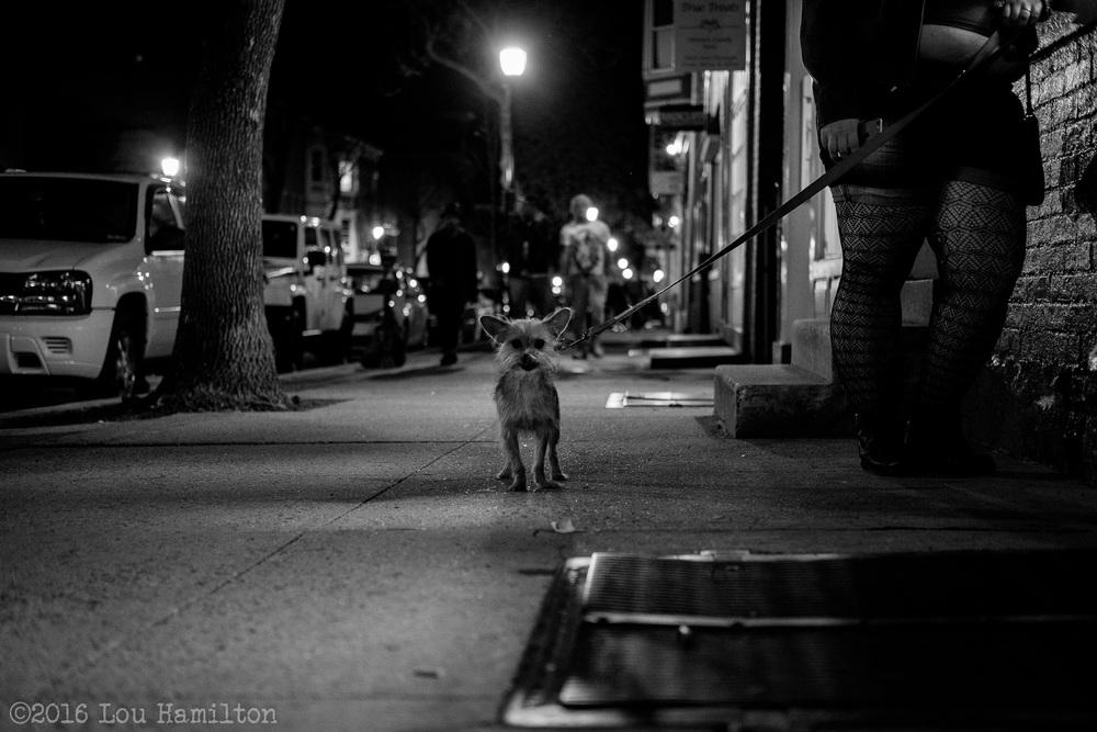 2 April 2016 -- Frederick, MD (Market Street)