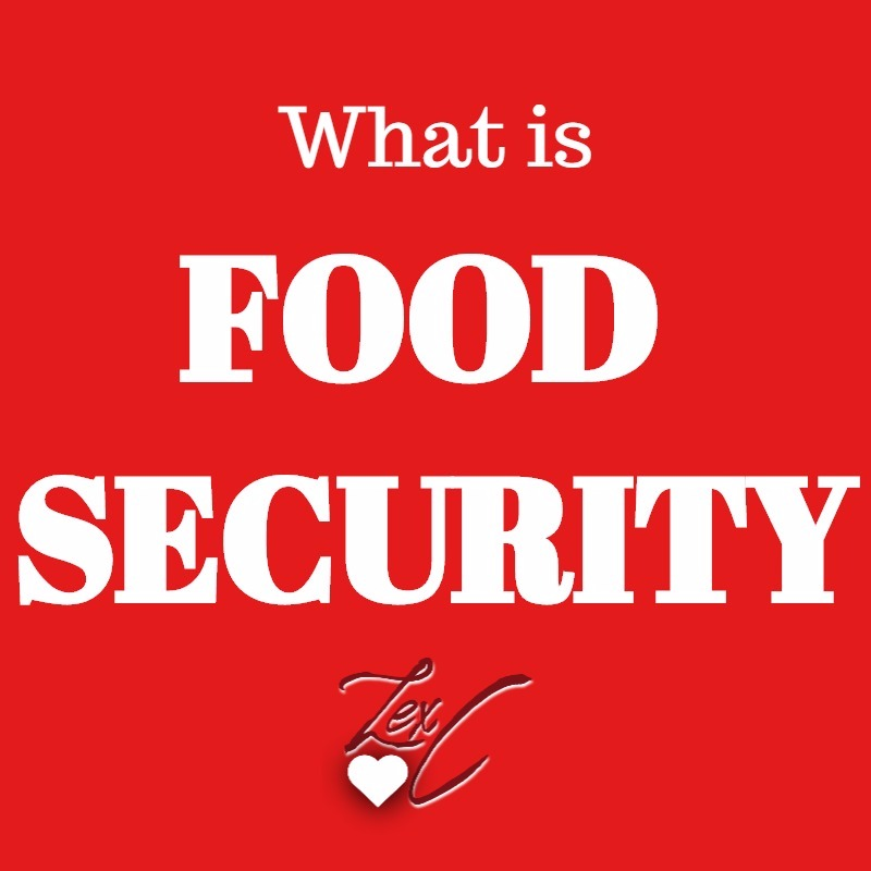 "What is ""Food Security?"""