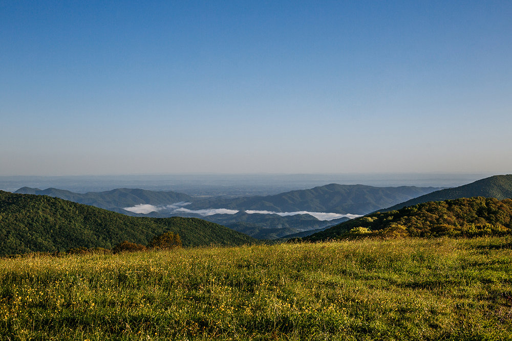 Max Patch-360 Mountain View