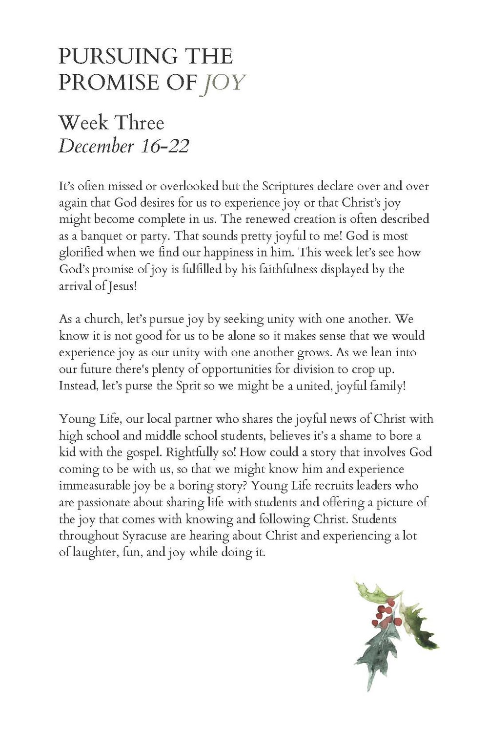 Final Advent Guide - for digital publication_Page_21.jpg