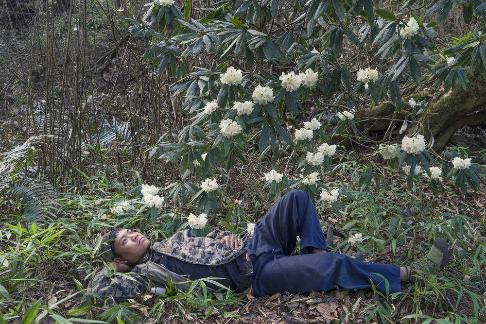 "Cheng Xinhao, from his project ""Beyond the Forest: The Mang Borderland.""   The Mang resting under the azalea."