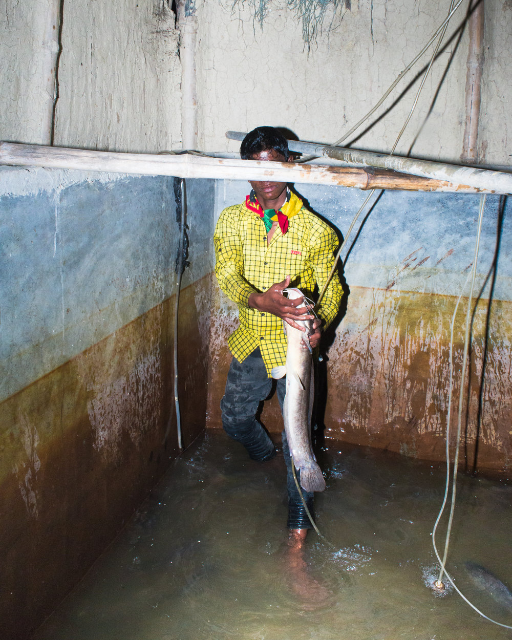 Sagar Chhetri,  Eclipse,  Birgunj, Parsa, Nepal, 2016. Bambaiya wanted me to buy his fish.