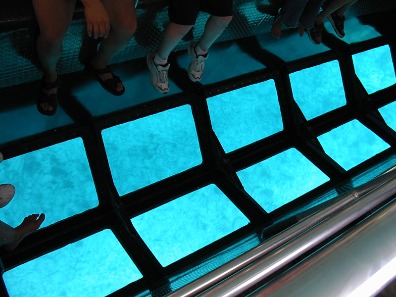 Awesome Glass Bottom Boat Is a Treat To Eyes!     The Glass Bottom Boat riding, the Florida's oldest attraction, portrays the underwater life and the crystal clear spring. If you go with children to the Key West Islands or nearby; we advise you to do a very special tour: A ride on a glass bottom boat that allows you to see the beauty of this natural marine park. It's not like diving, but many fish are, you have a magic point: see the Mediterranean through the floor of the boat and, children leave happy.     The best time to visit Key West is in winter or spring, avoiding the hurricane months, between May and November, and the rainy season in July and August. I was in August, and torrential rain a little at night, but during the day the sun was shining. Come to enjoy our heart-enthralling trips up and down the Silver River!