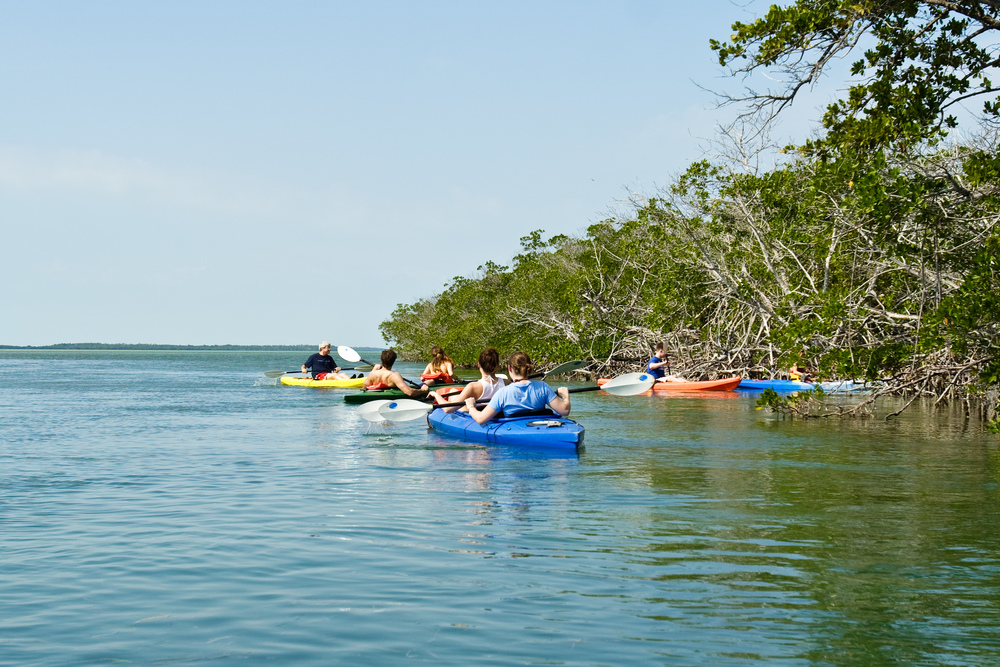 Kayak into an adventure in the waters of Key west!     Sail into the wonderful backcountry waters that arise from the Gulf Of Mexico. You will kayak through secluded flowering tree islands and snorkel in blue inexperienced waters through magnificent coral reef.     Enjoy the day lying around the beaches and the sandbars, picnicking and wit a cool drink in your hand.