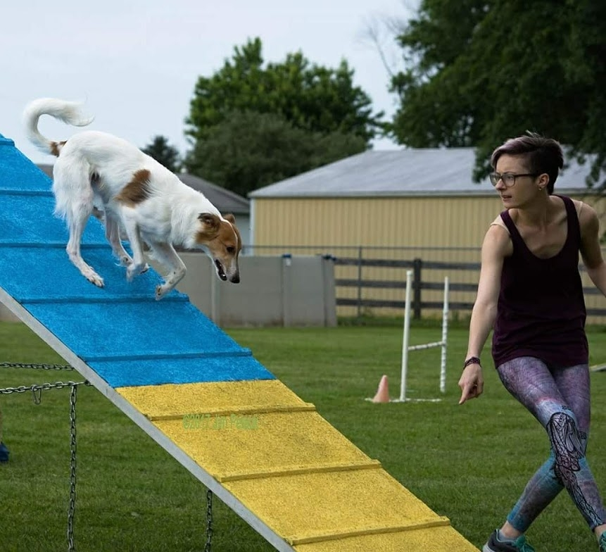 Ann Marie running agility with her dog, Wally photo ©jim petack photography