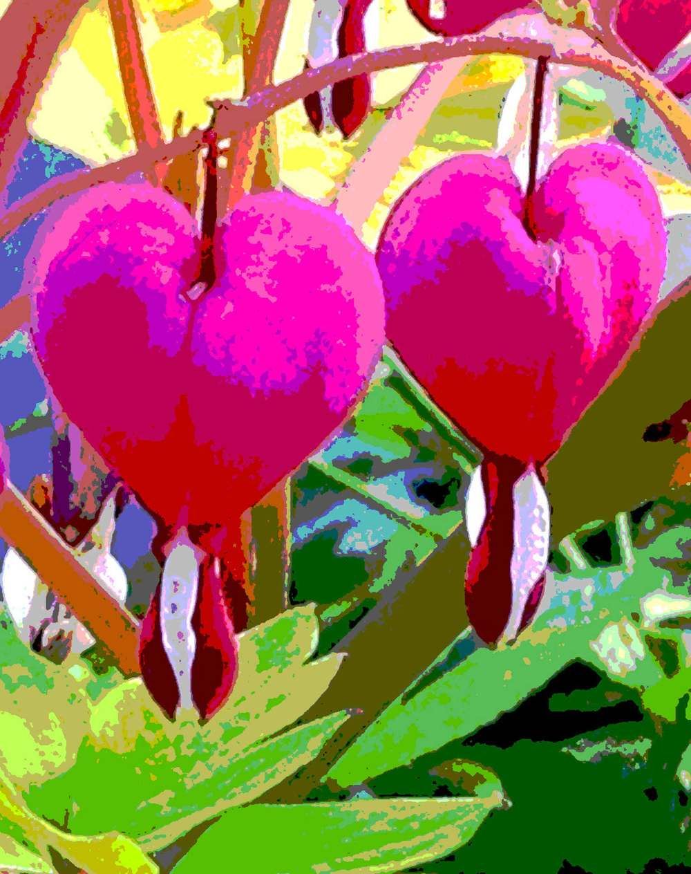 VBartlett_bleeding-heart.jpg.jpg