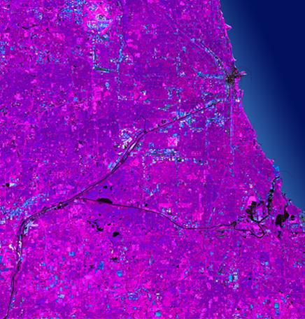 ChicagoPurple.jpg