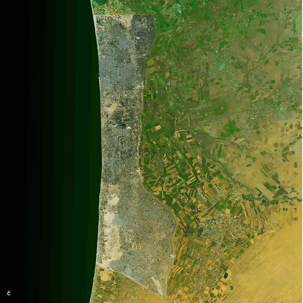 Hangtag Gaza Green 42 x 42.jpg