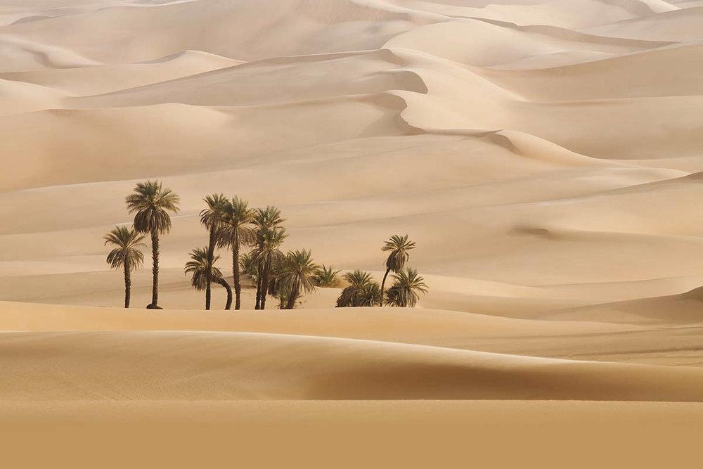 Dubai edited.jpg