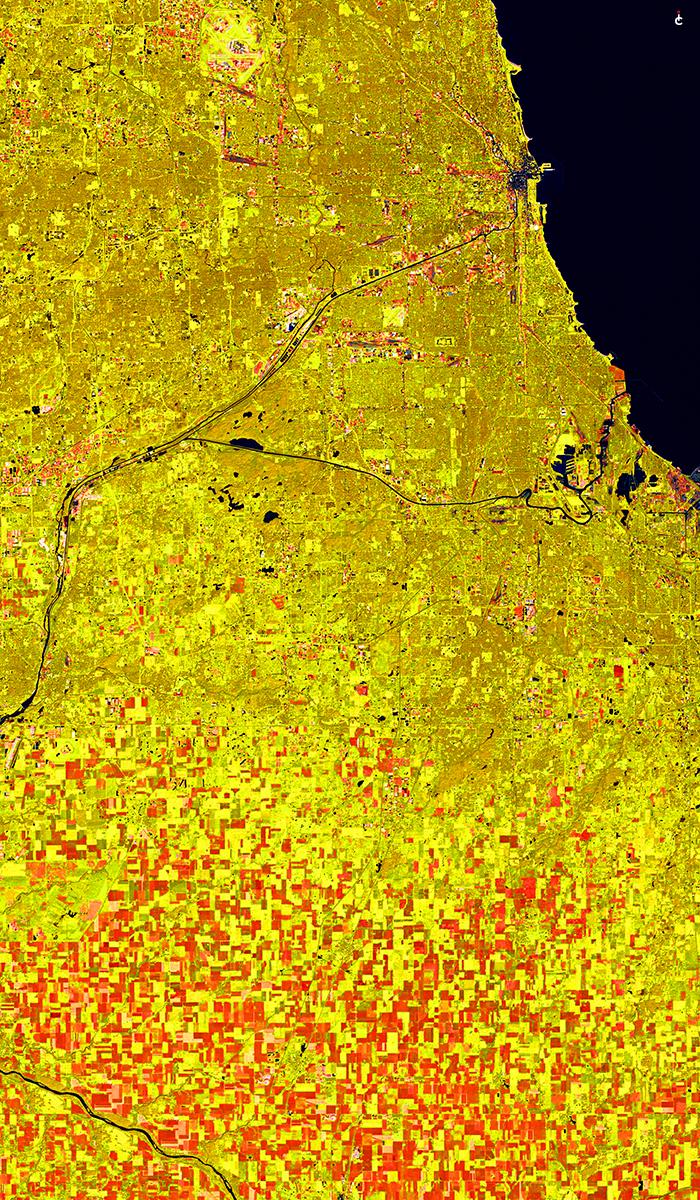 Chicago+Yellow+MAp.jpg