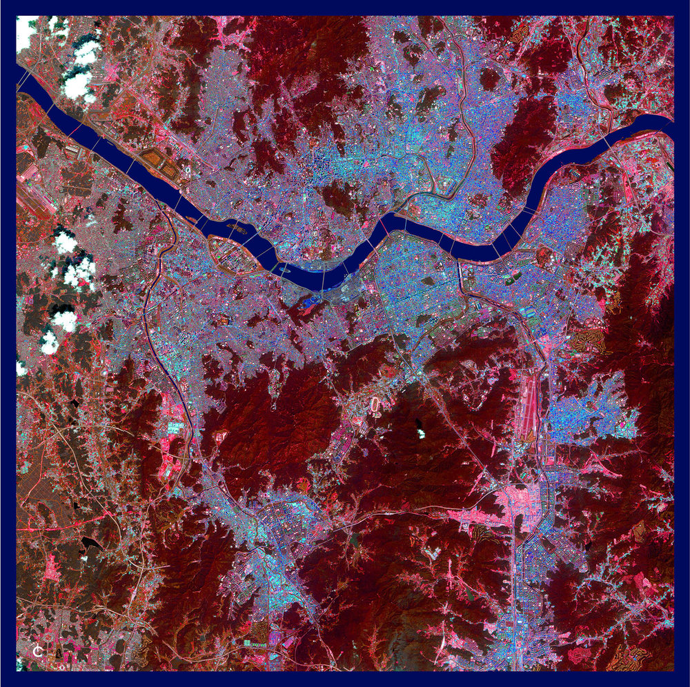seoul scarf red and blu 42 x 42 w border small.jpg
