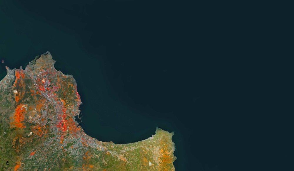 Palermo green-navy small.jpg