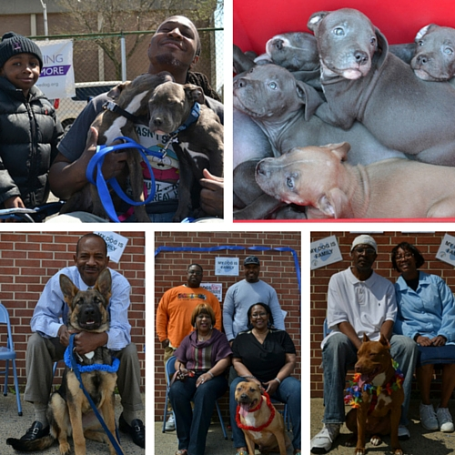 April 2013 – Community Pit Bull Day at Franklin Square Elementary/Middle School