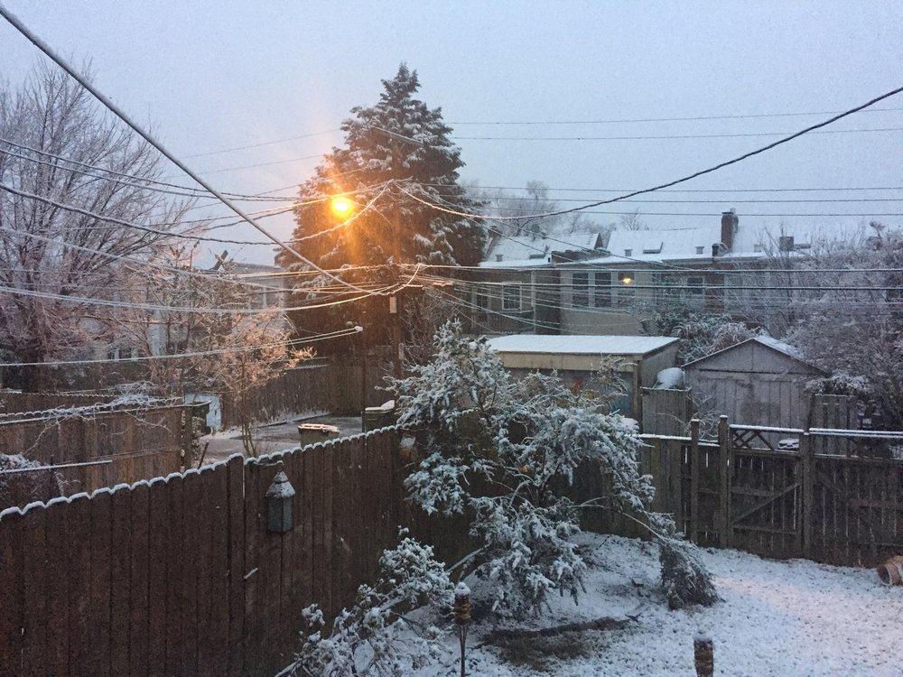 Snow 2017.jpg