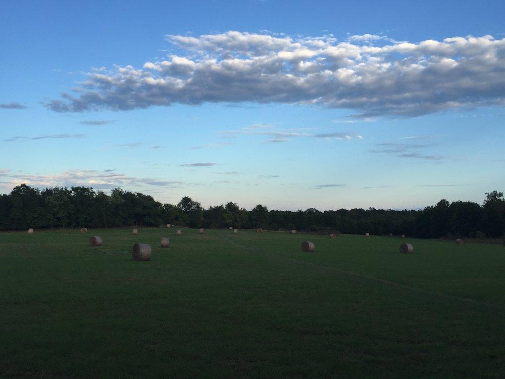 Manassas evening sky.JPG