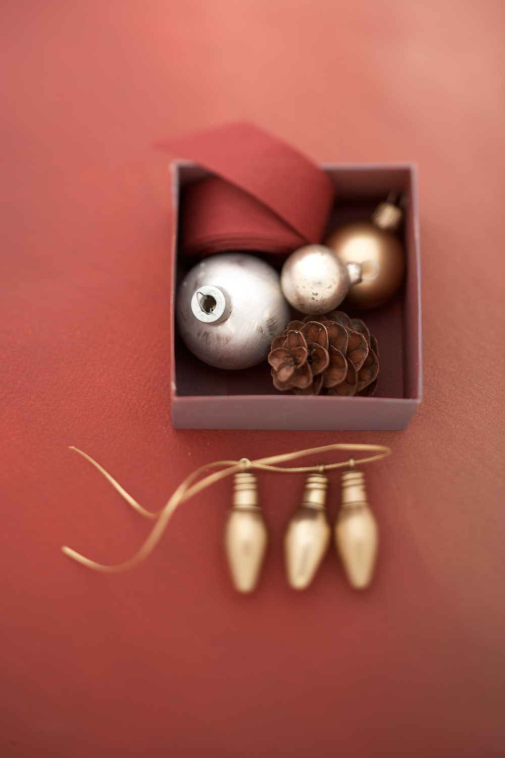 Product Photography StillLife Derek Israelsen Ornaments Pinecone