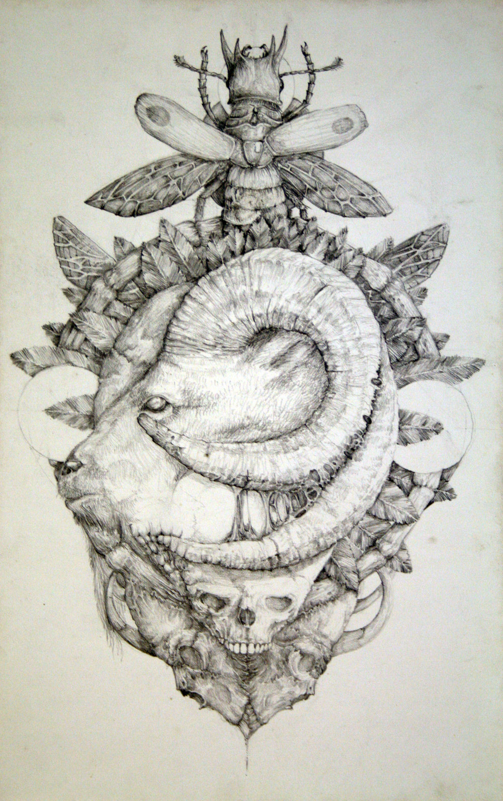 sketch 5.jpg