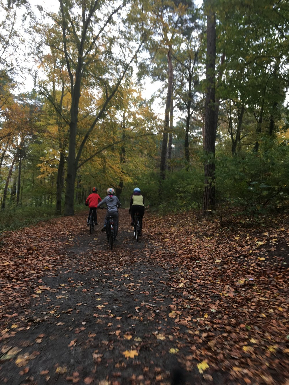 Cycling the Berlin Wall Trail
