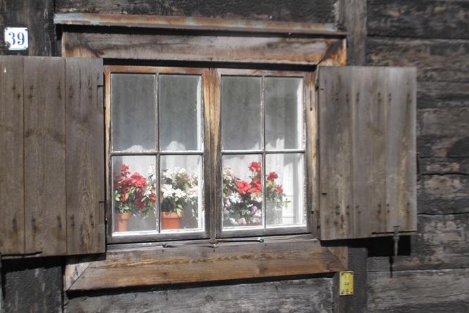 Window Visby Gotland Sweden