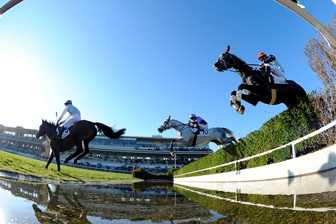 Steeplechase at Auteuil racecourse in Paris. Photo courtesy Turfomania.