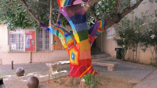 A yarn-bombed olive tree outside the Modern Art Museum of Céret. Photo: Elizabeth Kemble for Travellati Tours.