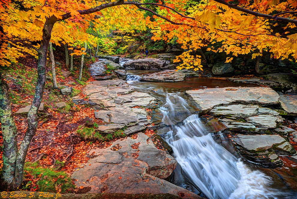 The Fall foliage along the Kaaterskill Creek in the Catskill Mountain region of New York State.
