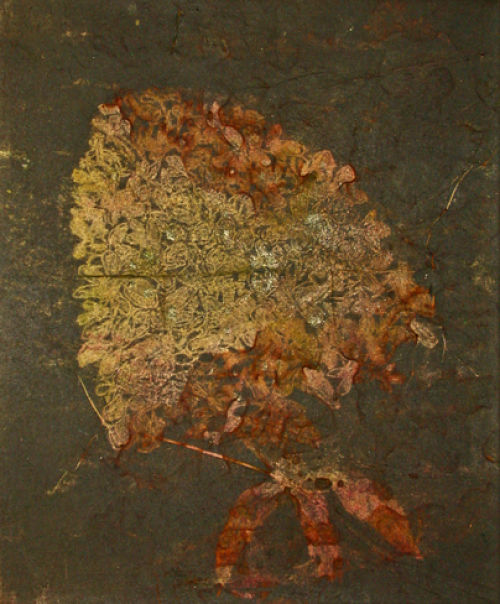 Hydrangea, rust print on rice paper to canvas, Gerda van Leeuwen.