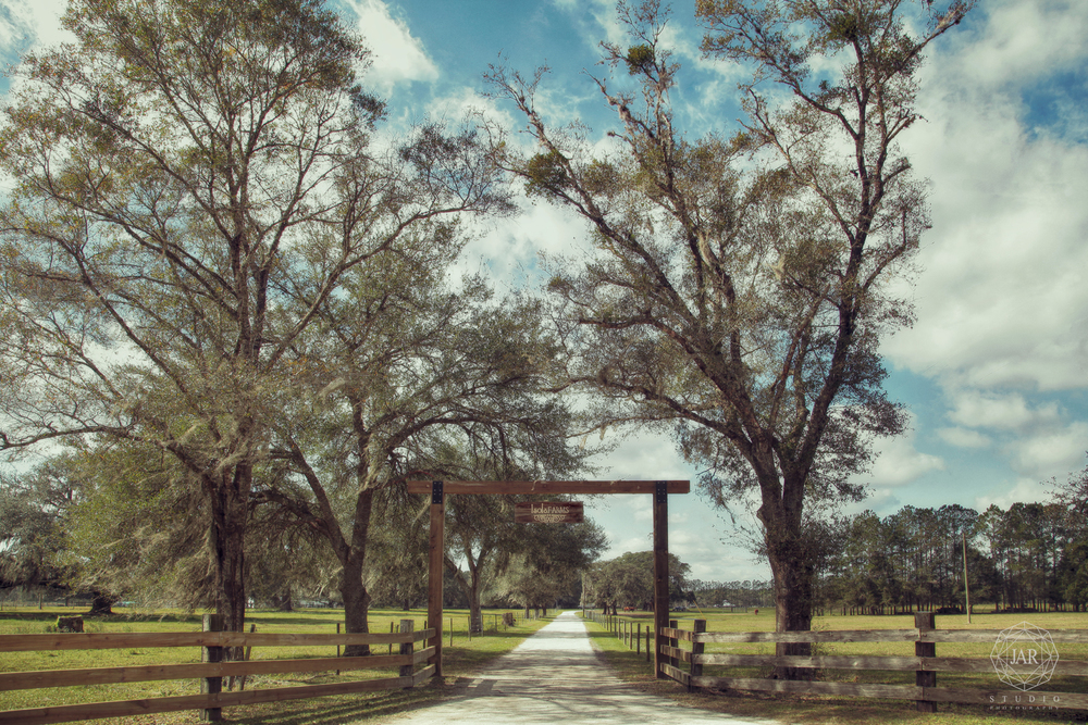 01-orlando-best-venue-rustic-wedding-isola-farms-jarstudio.jpg