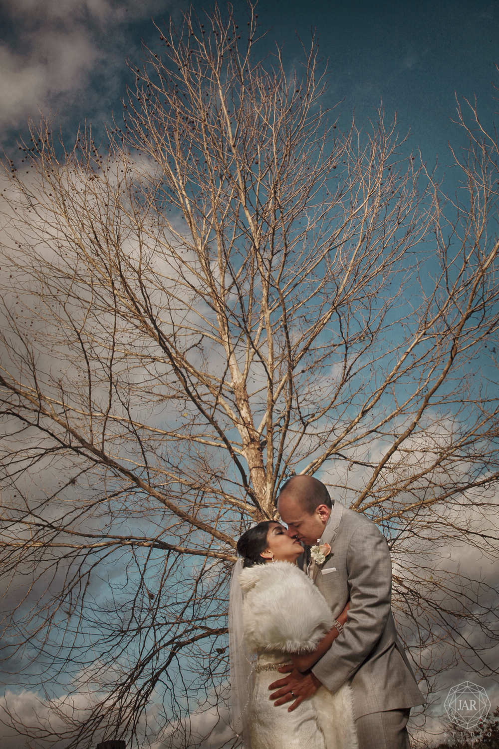 14-bride-groom-tree-kissing-love-isola-farms-jarstudio.jpg