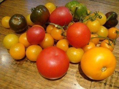 tomato-colors-400x300.jpg