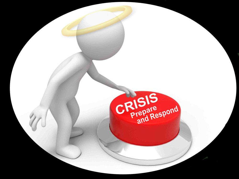 2_Crises response .jpg