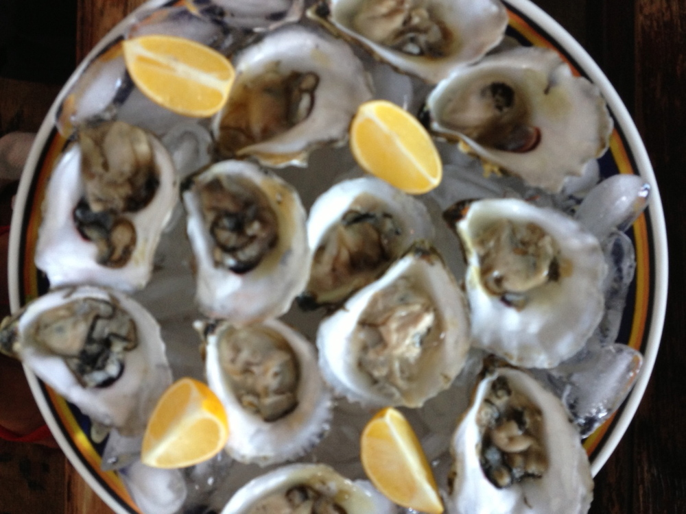 Serving up oysters.