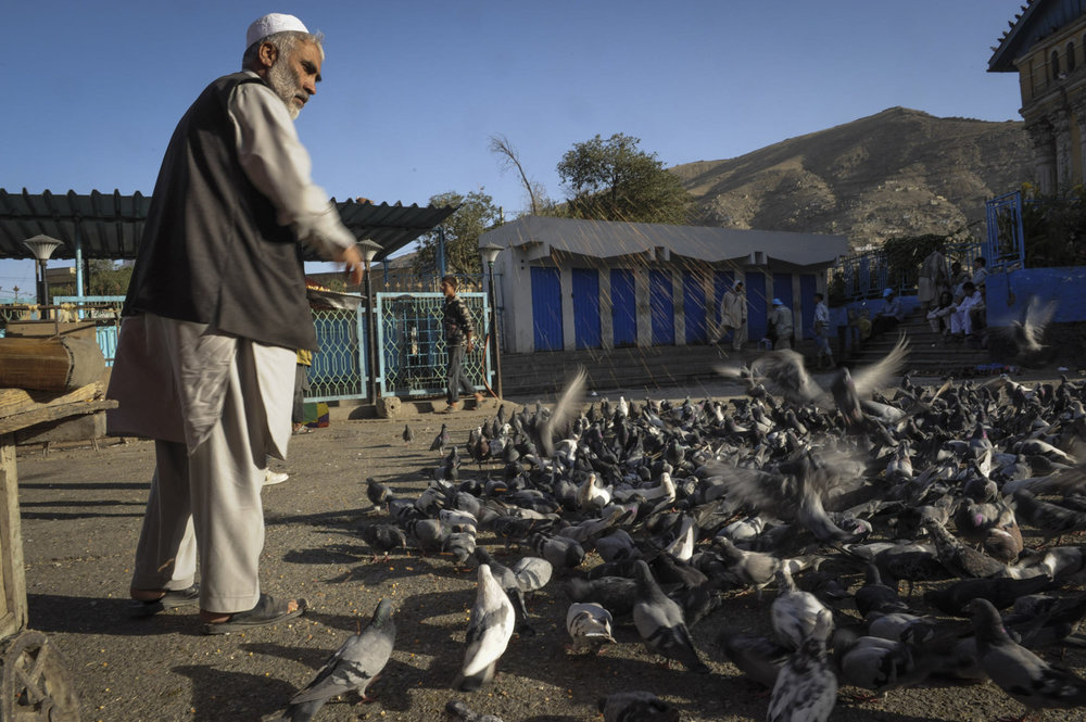 A man feeds the birds outside of a mosque near the Kabul River in the old city of Kabul, Afghanistan.