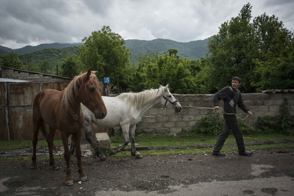 In the secluded Muslim enclave of the Pankisi Valley, a farming and agro-tourism village, a man pulls his horses down the main street in Jokolo, Georgia.