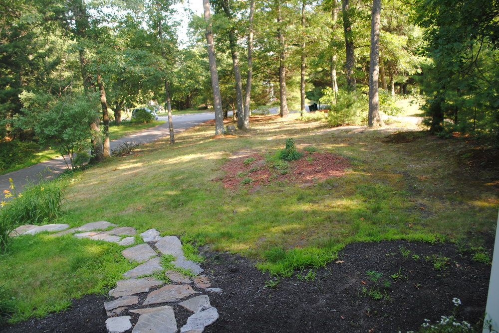 Front yard, West Concord, MA