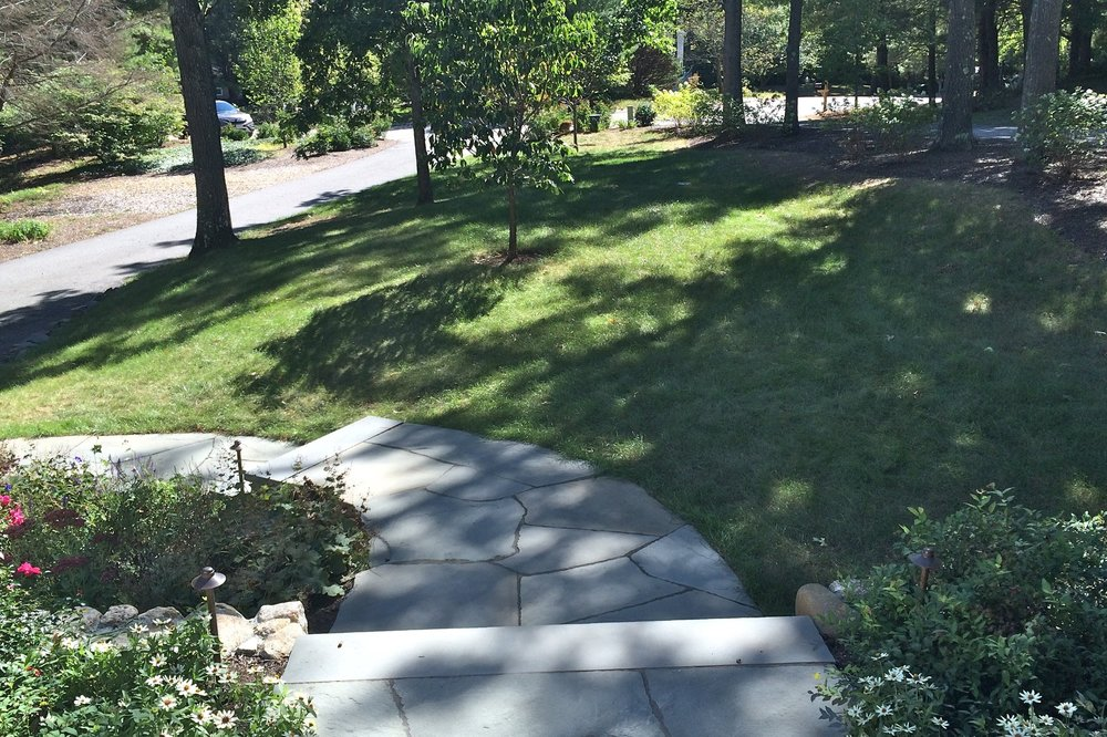 A granite path and steps lead down to the driveway. Some trees are thinned and removed and lawn is repaired.