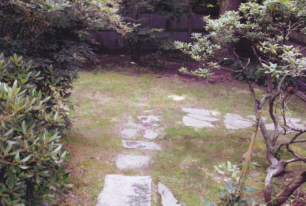 Side yard, Concord, MA