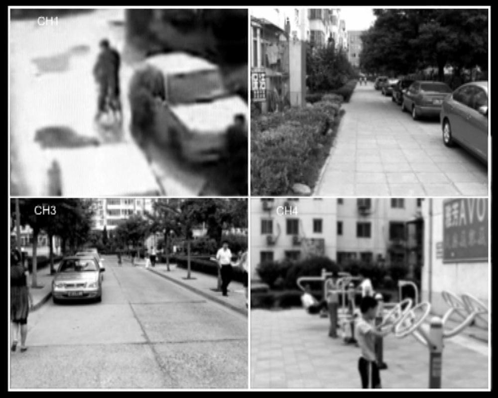 Whose Eyes 03-1280.jpg