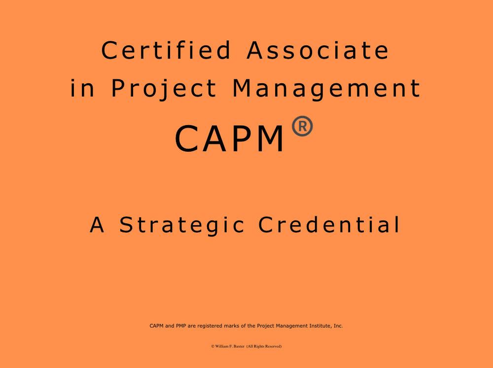 E Learning Capm