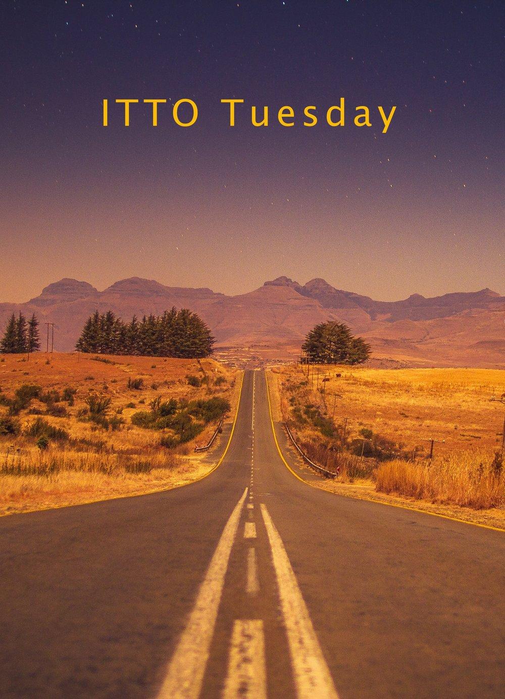 ITTO Tuesday.jpg
