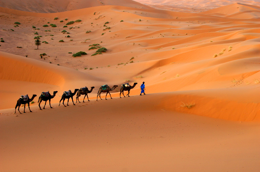 Sahara Desert Excursions