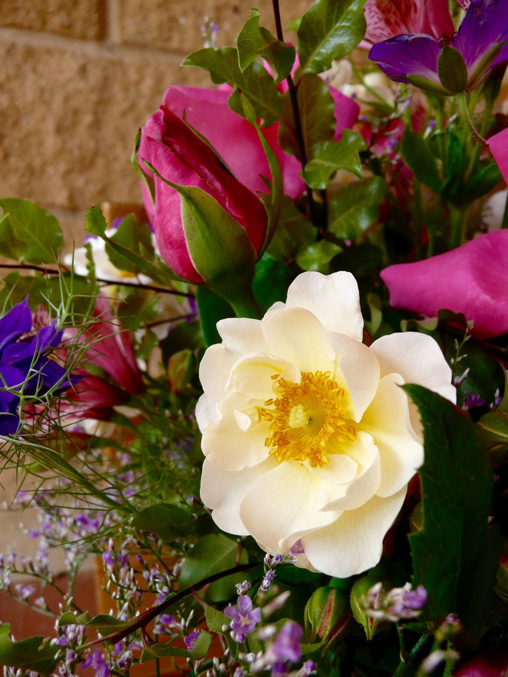 Friday Funday Bloom