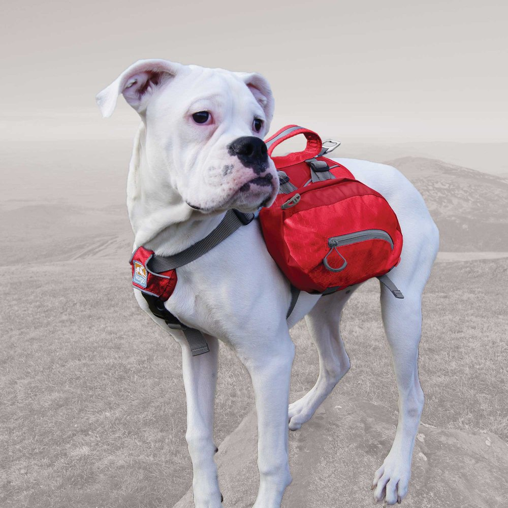 kurgo backpack 3.jpg
