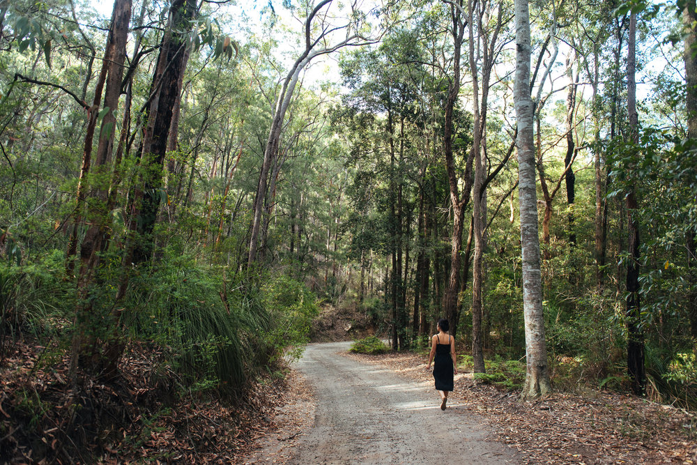 Blue Mountains National Park - Explore the surrounding bushland, both on the property and over the fence. The Blue Mountains National Park is full of creeks, rivers, waterfalls and more.
