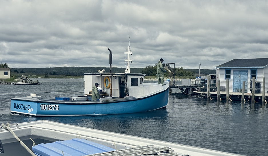 Lobster boat coming into the Gabarus, Cape Breton harbor