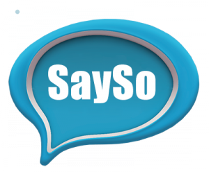 12sayso-copy-1-300x248.png