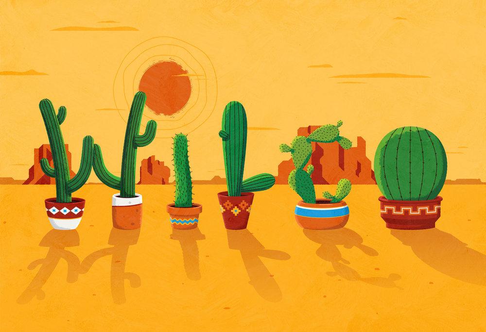 cactus_full.jpg