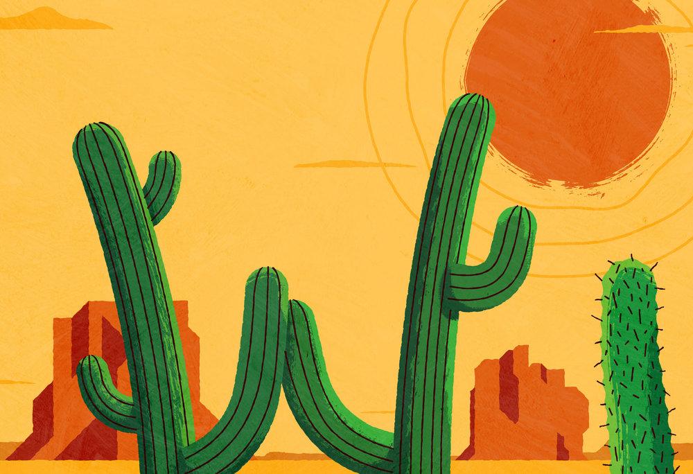 cactus_zoom2.jpg
