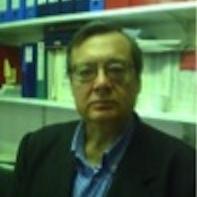 Fabio Brancaleoni